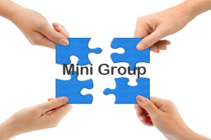 mini group